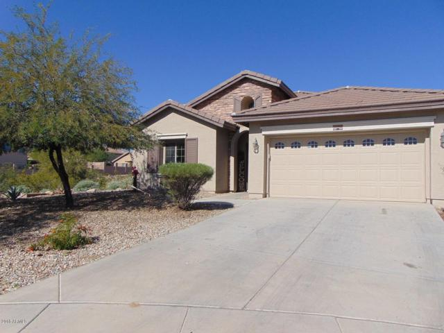 22198 W Twilight Trail, Buckeye, AZ 85326 (MLS #5844462) :: RE/MAX Excalibur
