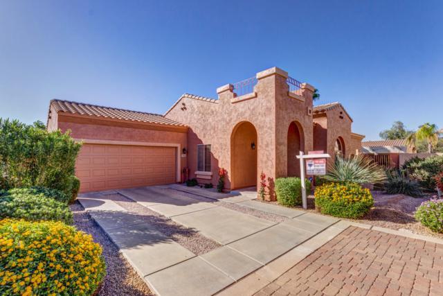 16906 N 50TH Way, Scottsdale, AZ 85254 (MLS #5844481) :: RE/MAX Excalibur