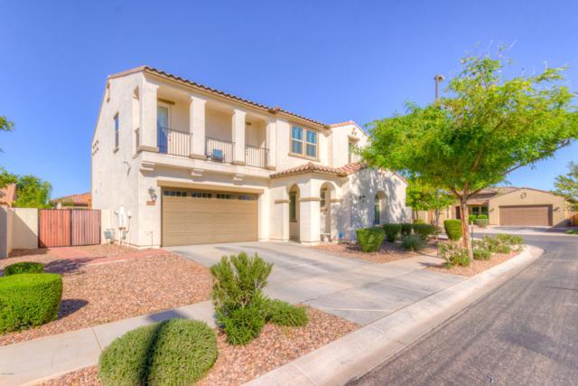 3560 E Patrick Street, Gilbert, AZ 85295 (MLS #5844508) :: Lux Home Group at  Keller Williams Realty Phoenix