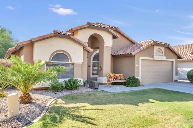 12317 W Edgemont Avenue, Avondale, AZ 85392 (MLS #5844586) :: Group 46:10