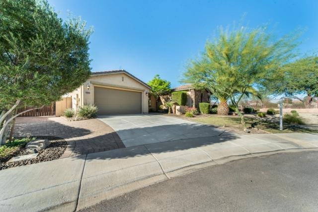 6554 S Legend Court, Gilbert, AZ 85298 (MLS #5844612) :: Team Wilson Real Estate