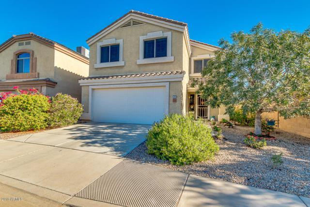 23645 N Desert Agave Street, Florence, AZ 85132 (MLS #5844631) :: Team Wilson Real Estate