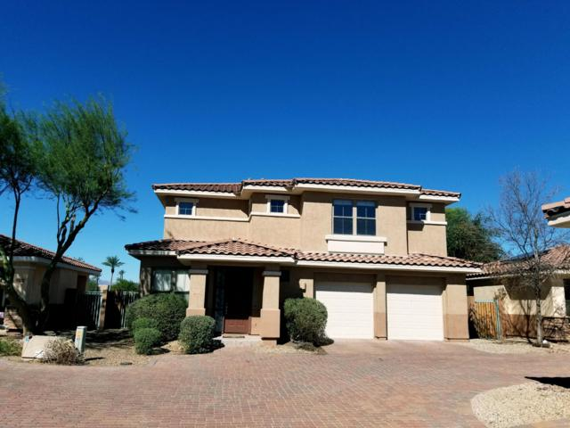 13664 W Cypress Street, Goodyear, AZ 85395 (MLS #5844639) :: Occasio Realty