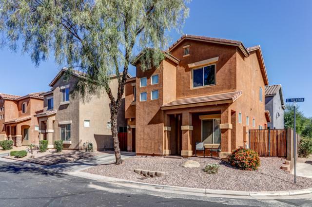 253 S Trenton, Mesa, AZ 85208 (MLS #5844665) :: Team Wilson Real Estate