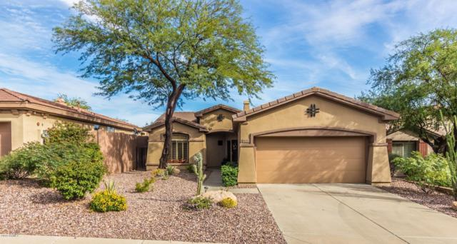 41253 N Belfair Way, Anthem, AZ 85086 (MLS #5844682) :: Team Wilson Real Estate