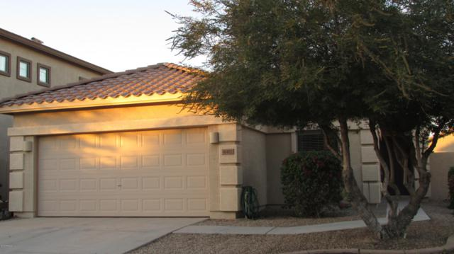41402 W Capistrano Drive, Maricopa, AZ 85138 (MLS #5844755) :: The Everest Team at My Home Group