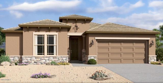 5436 W Leodra Lane, Laveen, AZ 85339 (MLS #5844756) :: Kelly Cook Real Estate Group