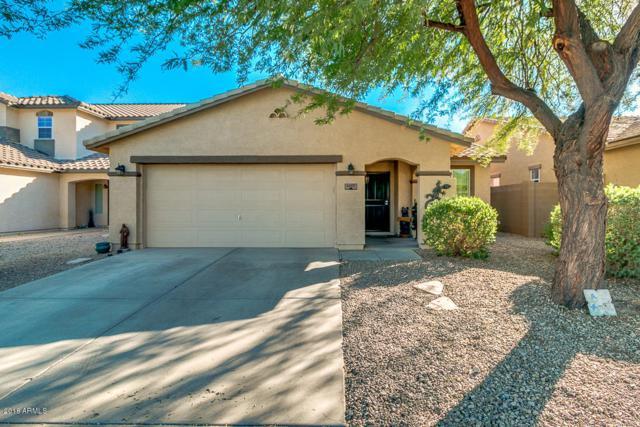 1457 E Desert Holly Drive, San Tan Valley, AZ 85143 (MLS #5844761) :: Yost Realty Group at RE/MAX Casa Grande