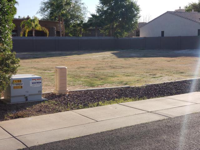 861 W Enfield Way, Chandler, AZ 85286 (MLS #5844794) :: Yost Realty Group at RE/MAX Casa Grande