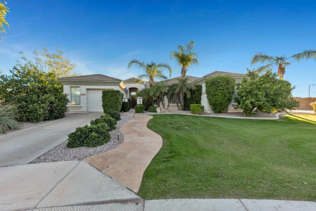 3909 E Fairfield Circle, Mesa, AZ 85205 (MLS #5844804) :: Yost Realty Group at RE/MAX Casa Grande
