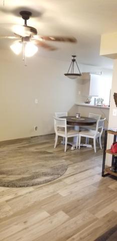 2301 E University Drive #221, Mesa, AZ 85213 (MLS #5844814) :: Yost Realty Group at RE/MAX Casa Grande