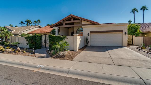 9815 E Cinnabar Avenue, Scottsdale, AZ 85258 (MLS #5844849) :: RE/MAX Excalibur