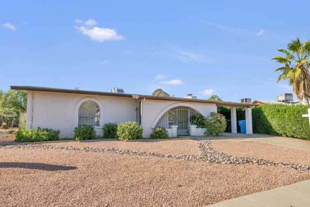 2131 E Beck Lane, Phoenix, AZ 85022 (MLS #5844854) :: Yost Realty Group at RE/MAX Casa Grande