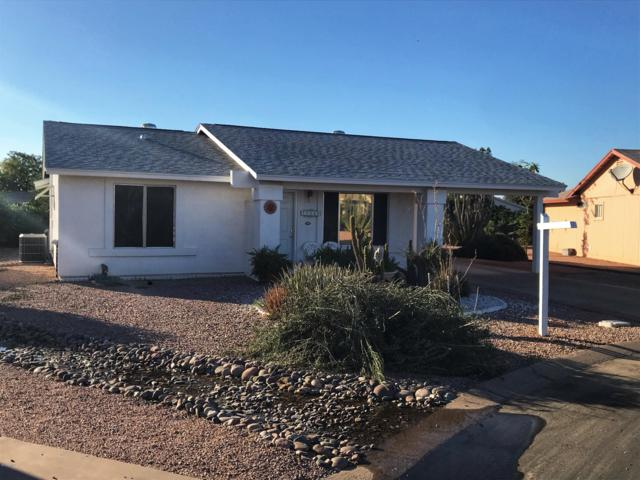 1146 S 81ST Place, Mesa, AZ 85208 (MLS #5844862) :: Team Wilson Real Estate