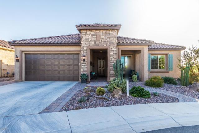 7119 W Turnstone Drive, Florence, AZ 85132 (MLS #5844908) :: Riddle Realty