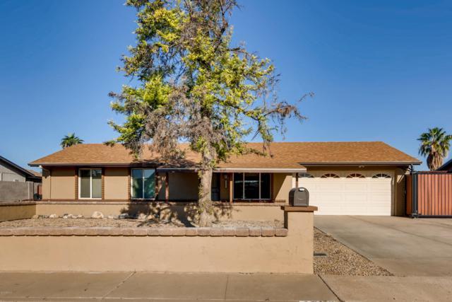 1706 W Hononegh Drive, Phoenix, AZ 85027 (MLS #5844910) :: Lifestyle Partners Team
