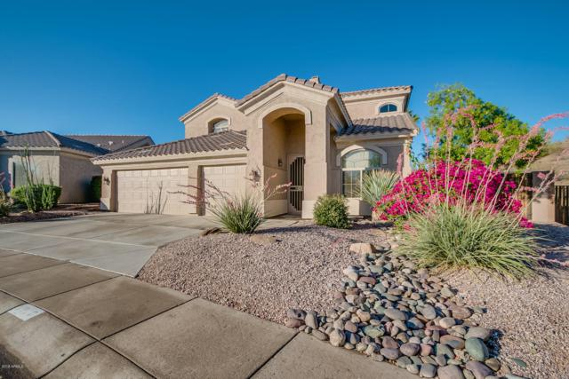 1320 W Deer Creek Road, Phoenix, AZ 85045 (MLS #5844915) :: Lux Home Group at  Keller Williams Realty Phoenix