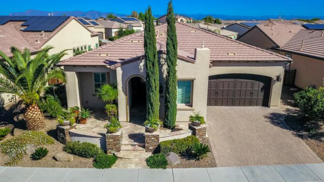36505 N Crucillo Drive, San Tan Valley, AZ 85140 (MLS #5844967) :: Team Wilson Real Estate