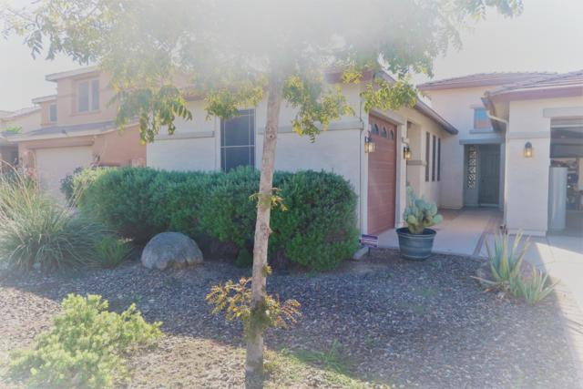 5337 W Winston Drive, Laveen, AZ 85339 (MLS #5845013) :: Kelly Cook Real Estate Group