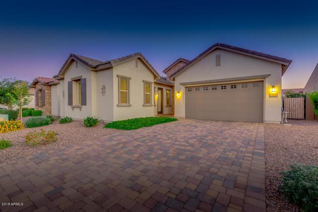 921 E Tonto Place, Chandler, AZ 85249 (MLS #5845058) :: Revelation Real Estate