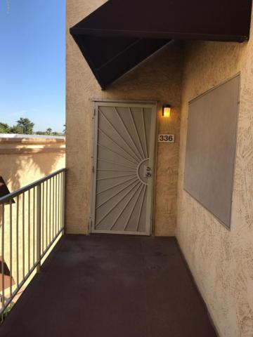 12221 W Bell Road #336, Surprise, AZ 85378 (MLS #5845059) :: The Everest Team at My Home Group