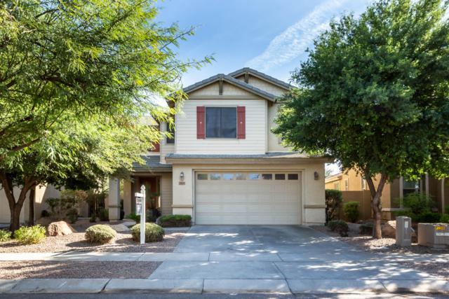 3825 S Vineyard Avenue, Gilbert, AZ 85297 (MLS #5845142) :: The Garcia Group