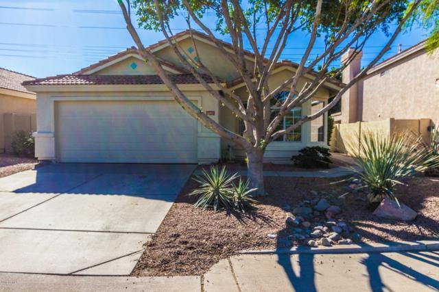 6053 E Sierra Morena Street, Mesa, AZ 85215 (MLS #5845149) :: The W Group