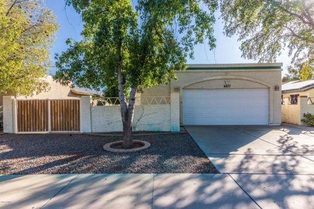 4437 W Taro Drive, Glendale, AZ 85308 (MLS #5845190) :: Lifestyle Partners Team
