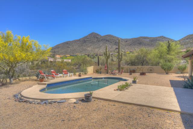 5834 E Leisure Lane, Cave Creek, AZ 85331 (MLS #5845221) :: RE/MAX Excalibur