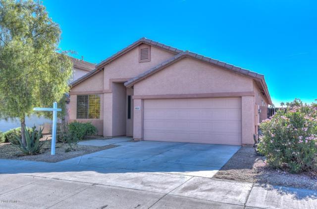 18117 W Canyon Lane, Goodyear, AZ 85338 (MLS #5845254) :: Yost Realty Group at RE/MAX Casa Grande