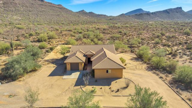 15 W Leann Lane, New River, AZ 85087 (MLS #5845277) :: Realty Executives