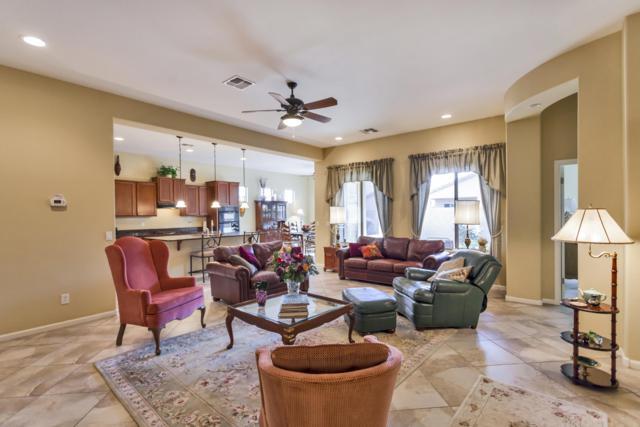 29041 N 70TH Lane, Peoria, AZ 85383 (MLS #5845296) :: Team Wilson Real Estate