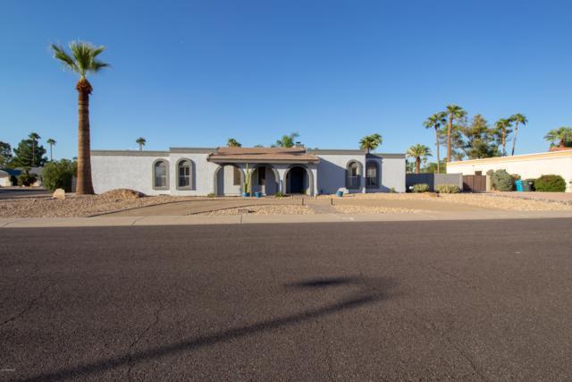 6002 E Friess Drive, Scottsdale, AZ 85254 (MLS #5845307) :: Conway Real Estate