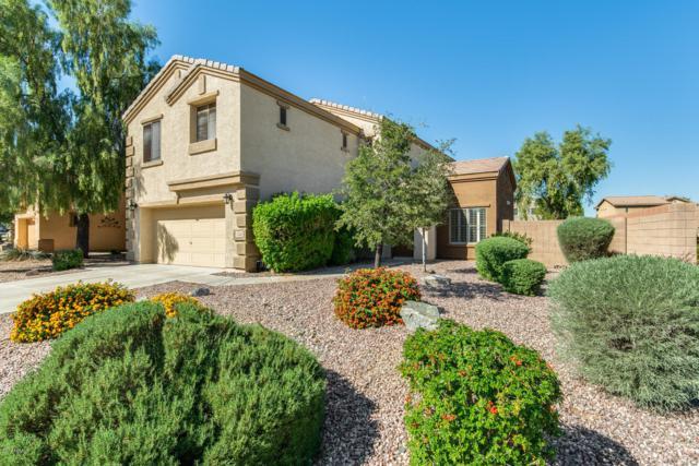 17534 W Calavar Road, Surprise, AZ 85388 (MLS #5845314) :: Keller Williams Realty Phoenix