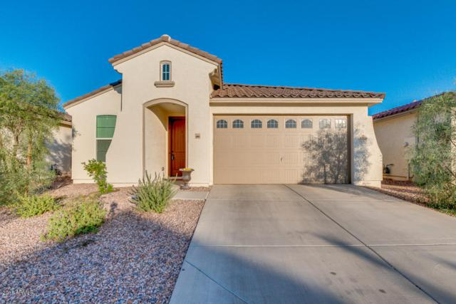 1625 S 104TH Drive, Tolleson, AZ 85353 (MLS #5845364) :: Group 46:10