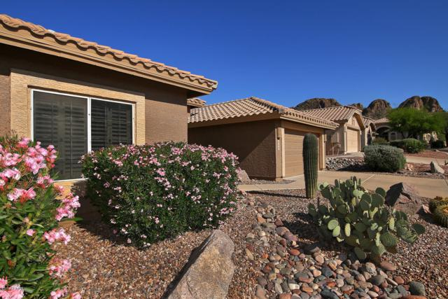 8932 E Yucca Blossom Drive, Gold Canyon, AZ 85118 (MLS #5845384) :: The Kenny Klaus Team