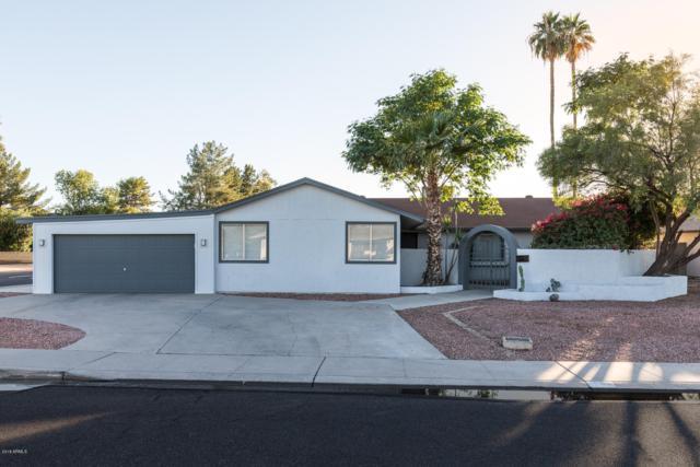 1089 E Frost Drive, Tempe, AZ 85282 (MLS #5845461) :: The W Group
