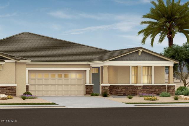 14580 W Reade Avenue, Litchfield Park, AZ 85340 (MLS #5845480) :: Kelly Cook Real Estate Group