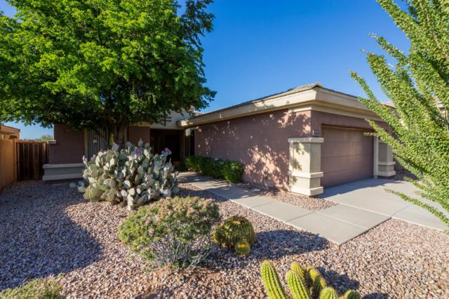 41436 N Clear Crossing Road, Anthem, AZ 85086 (MLS #5845484) :: RE/MAX Excalibur