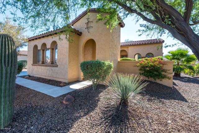 12461 W Fetlock Trail, Peoria, AZ 85383 (MLS #5845499) :: Lifestyle Partners Team