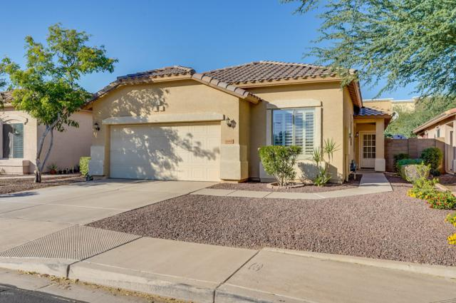 16960 W Lundberg Street, Surprise, AZ 85388 (MLS #5845503) :: The Garcia Group