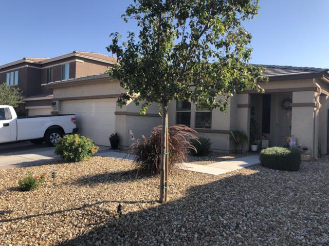 18621 W Palo Verde Avenue, Waddell, AZ 85355 (MLS #5845520) :: Kelly Cook Real Estate Group