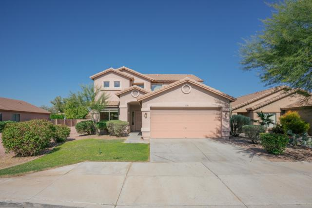 13746 W Peck Drive, Litchfield Park, AZ 85340 (MLS #5845539) :: Group 46:10