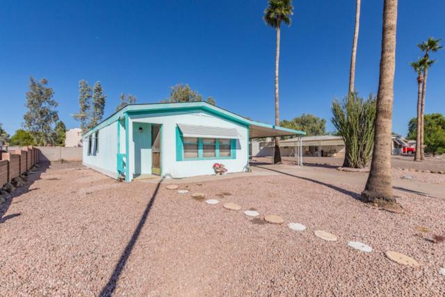 7264 E Abilene Avenue, Mesa, AZ 85208 (MLS #5845605) :: The Bill and Cindy Flowers Team