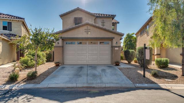 40381 W Peggy Court, Maricopa, AZ 85138 (MLS #5845636) :: Group 46:10