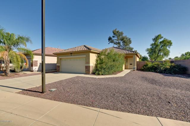 16605 N 169TH Avenue, Surprise, AZ 85388 (MLS #5845735) :: Kelly Cook Real Estate Group
