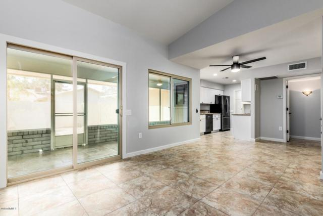 13433 W Countryside Drive, Sun City West, AZ 85375 (MLS #5845750) :: Kelly Cook Real Estate Group