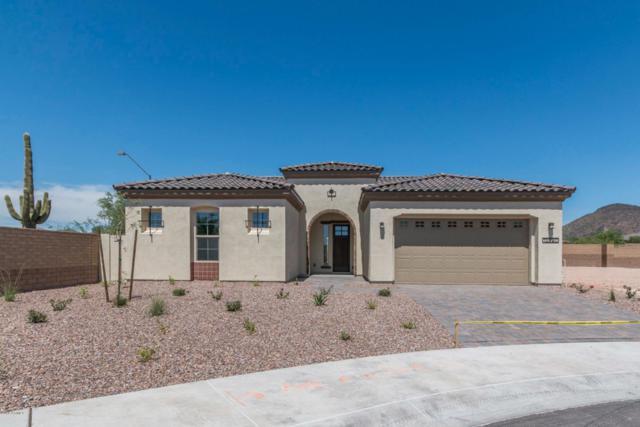 12890 W Pasaro Drive, Peoria, AZ 85383 (MLS #5845754) :: Kelly Cook Real Estate Group