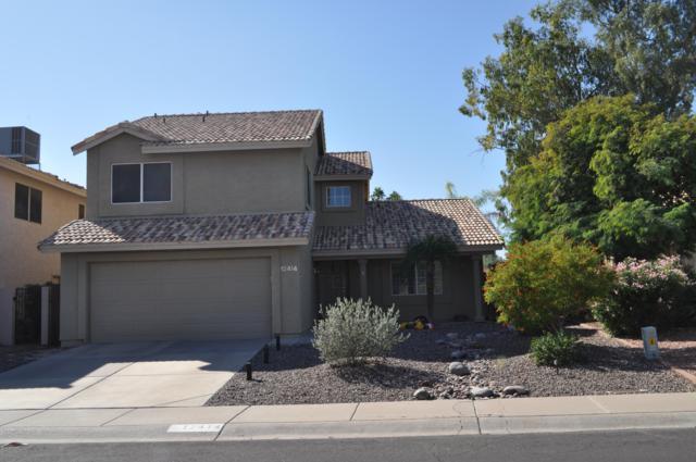 12414 S 44TH Street, Phoenix, AZ 85044 (MLS #5845759) :: Team Wilson Real Estate