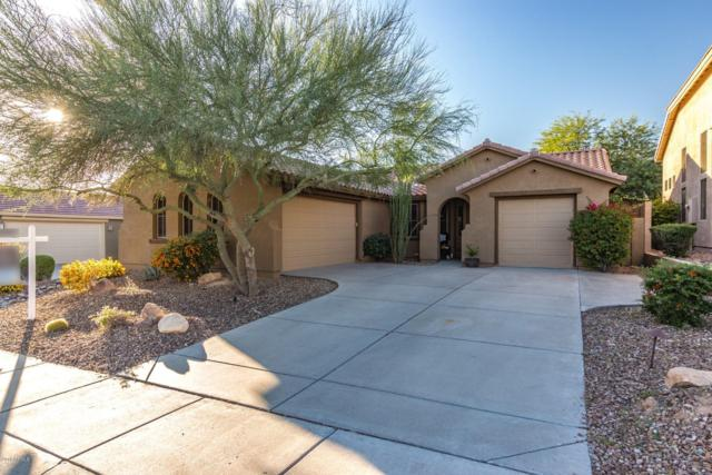 40622 N Panther Creek Trail, Anthem, AZ 85086 (MLS #5845762) :: Riddle Realty